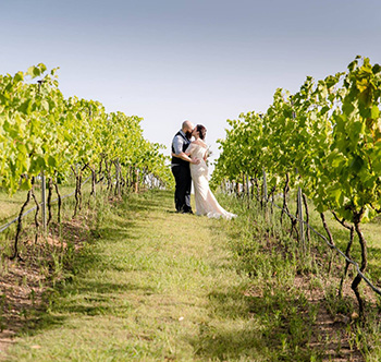 Marry Me Marilyn Trelise & Jamie Wedding The Arbour Sirromet Winery Mount Cotton Redlands